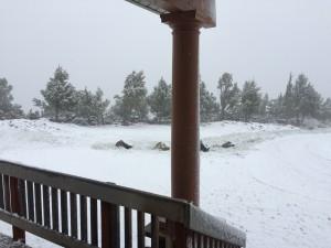 Snow, Again